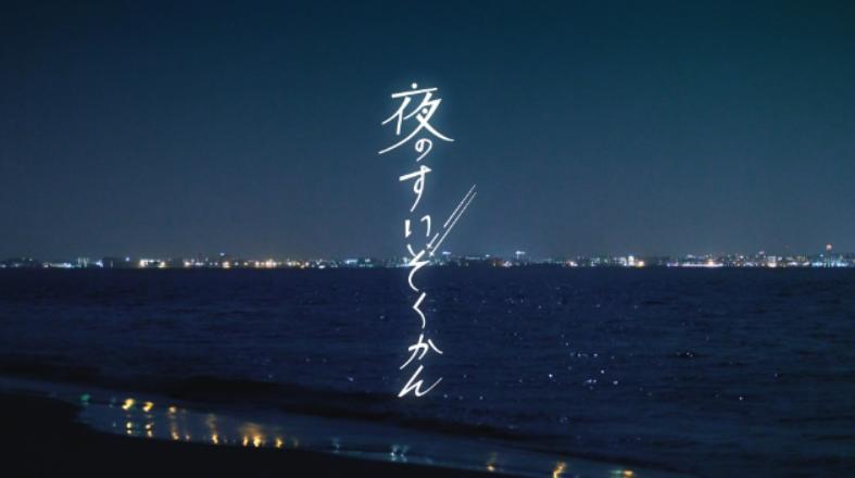 マリンワールド「夜のすいぞくかん」開催中!!